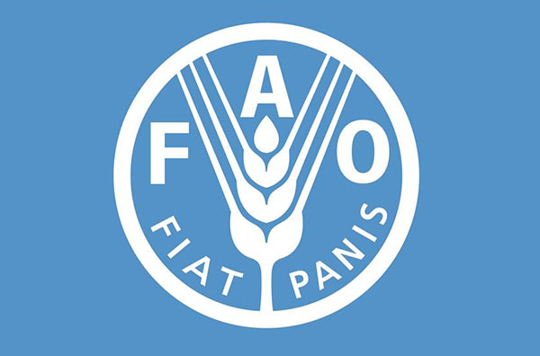 Логотип Food and Agriculture Organization